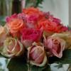 skicka_blommor_20130320_1857598098.jpg