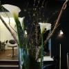 foeretagsblommor_20120521_1837063733.jpg
