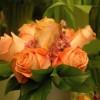 skicka_blommor_20130208_1021087312.jpg