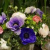 skicka_blommor_20180210_1459568030.jpg