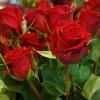 skicka_blommor_6_20111102_1649450727.jpg